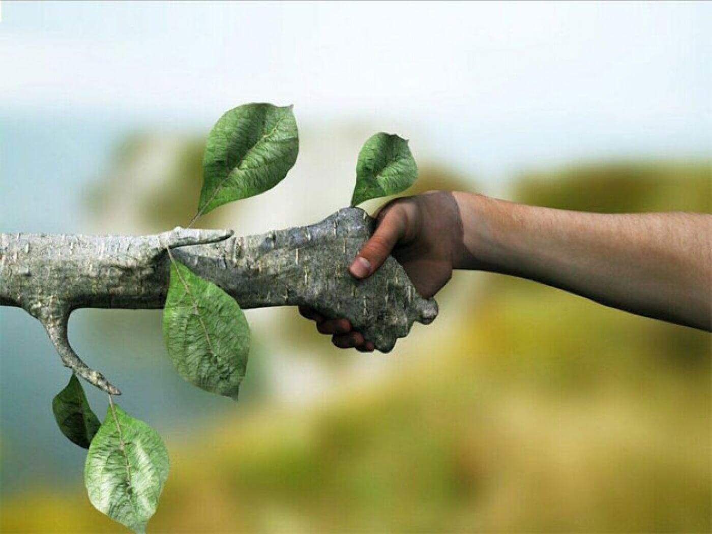 Ecologismo ¿Diálogo desideologizado?