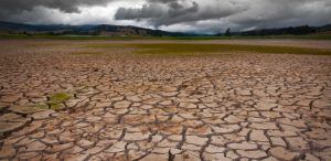 Adecuarnos a lo inevitable: la incidencia del cambio climático en nuestras vidas cotidianas