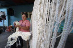 Curagua, tradición con fibra venezolana