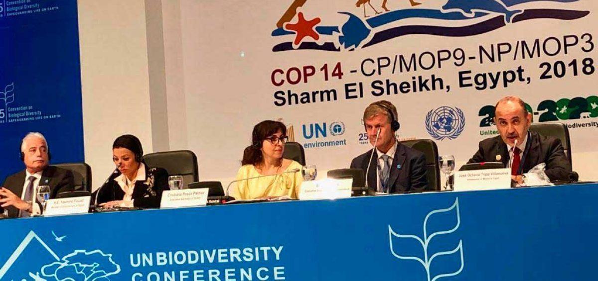 Venezuela ratifica en Egipto su compromiso con la preservación del planeta