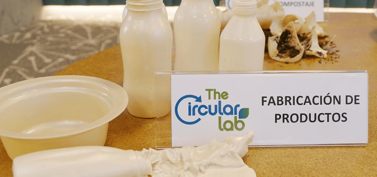 Crean sustituto del plástico a partir de residuos vegetales
