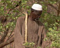 Yacouba Sawadogo, el hombre volvió fértil el desierto