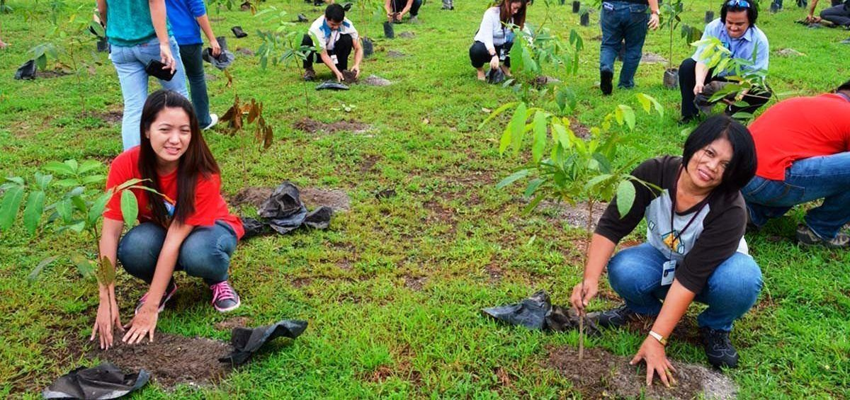 Propuesta de ley en Filipinas establece que cada estudiante siembre 10 árboles