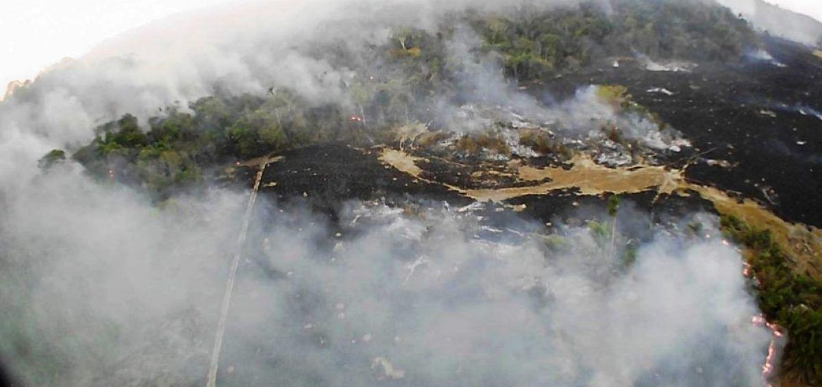 La Amazonía. Tareas urgentes