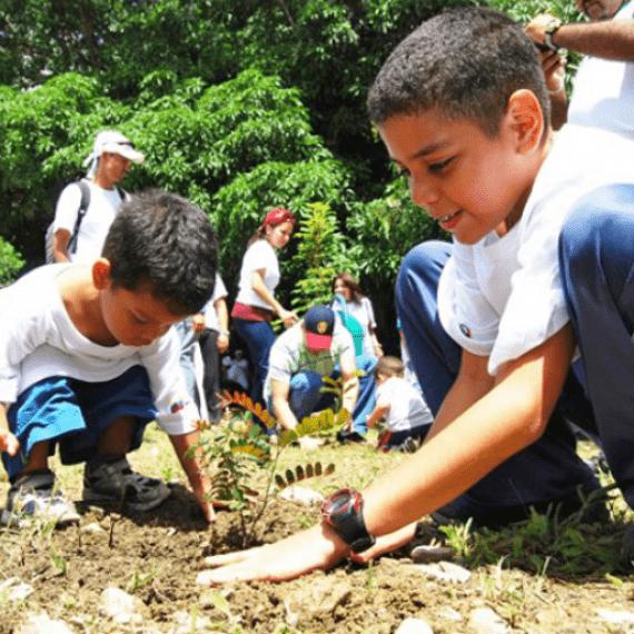 Fomentar la educación ambiental en niños y niñas es preservar el ambiente (I)