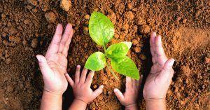 Educación ambiental, clave ante la crisis climática