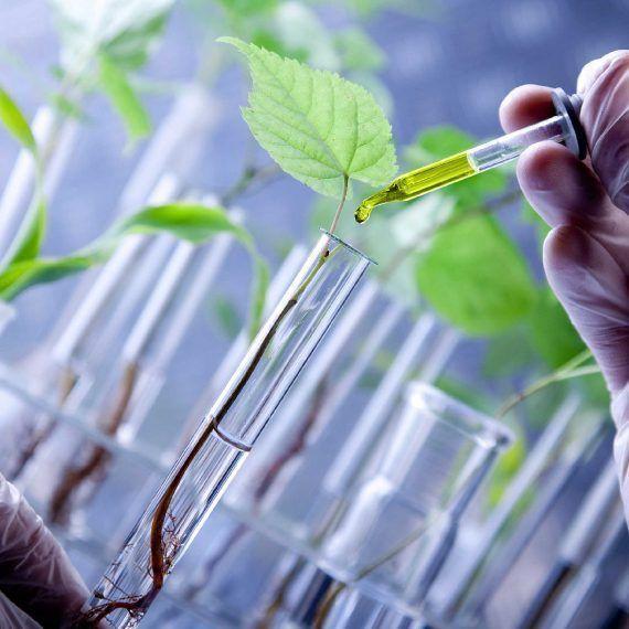 La biotecnología como respuesta a los agroquímicos