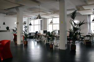 Oficinas conscientes y eficientes