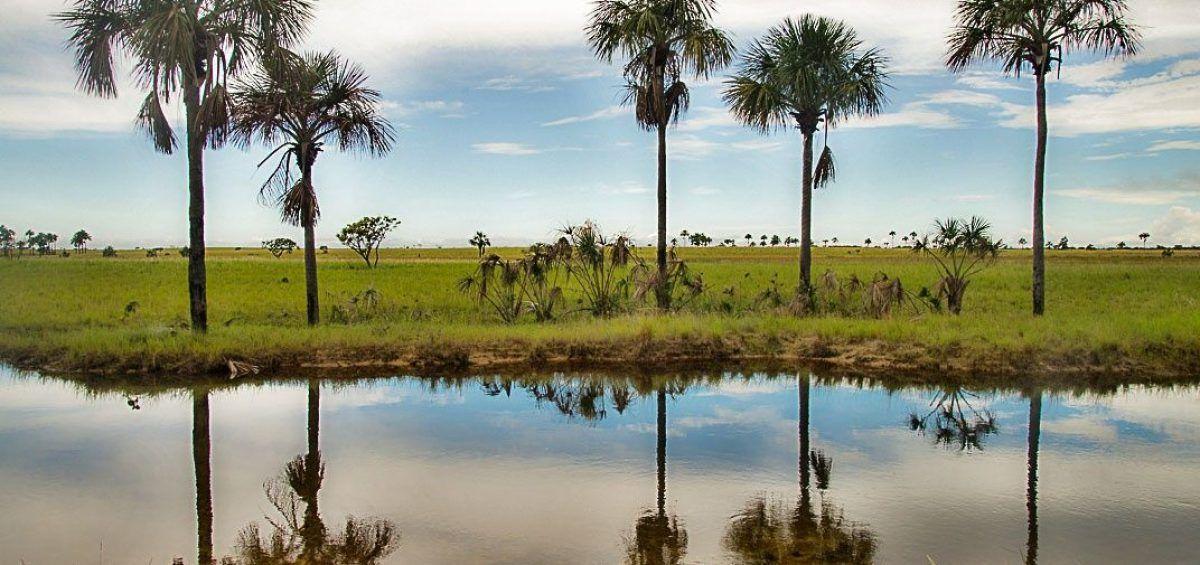 El agua dibuja los Esteros de Camaguán