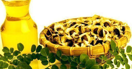 La moringa es rica en minerales, vitaminas y antioxidantes