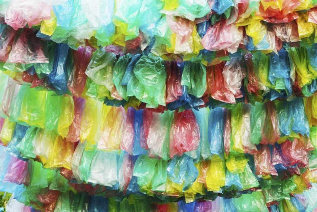 Por un mundo sin bolsas plásticas
