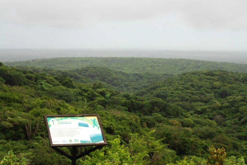 Montecano, el hogar de especies únicas en el mundo