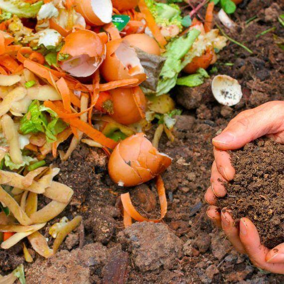 Compost casero: Pasos básicos para elaborar abono orgánico