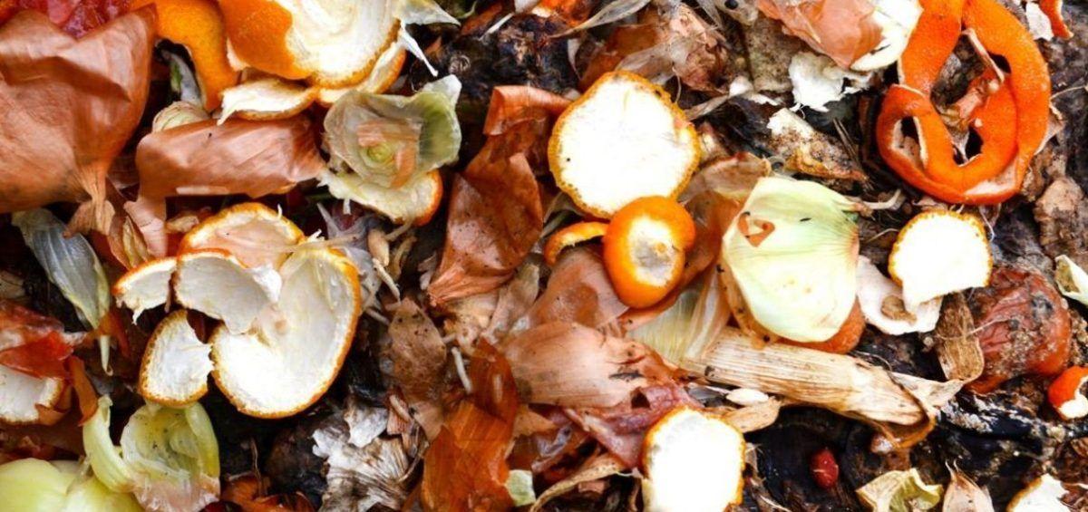 De desechos orgánicos a fuente de energía sustentable