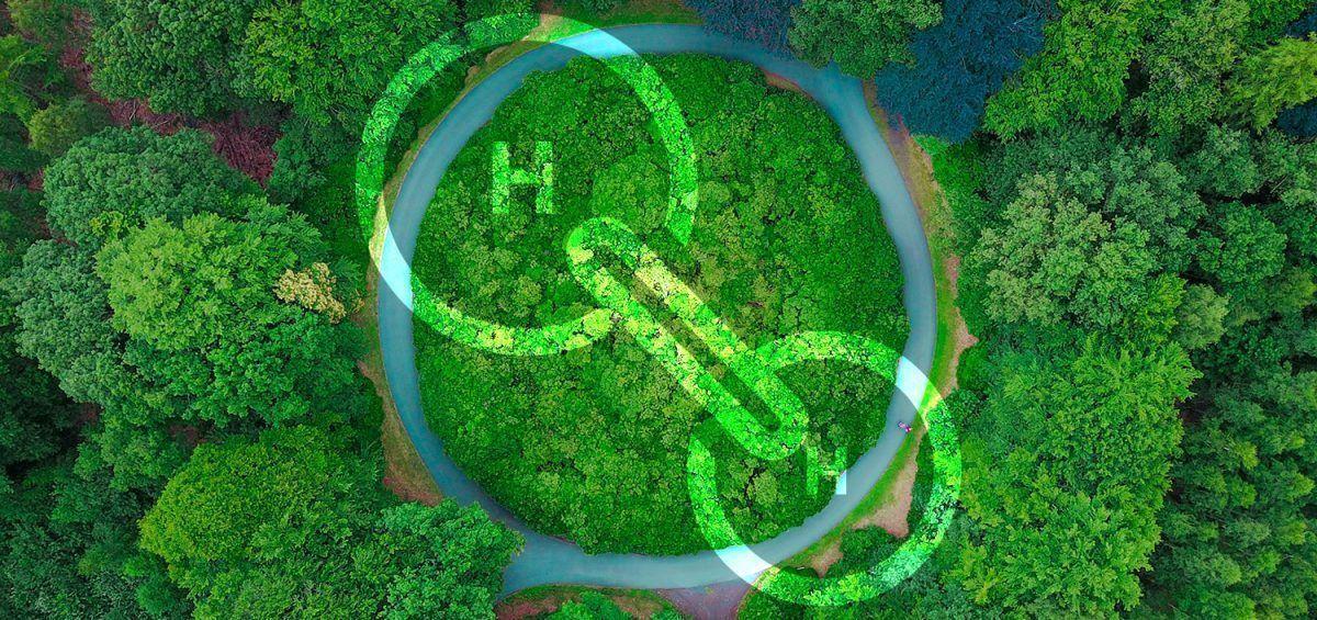 El hidrógeno verde podría acelerar la transición energética