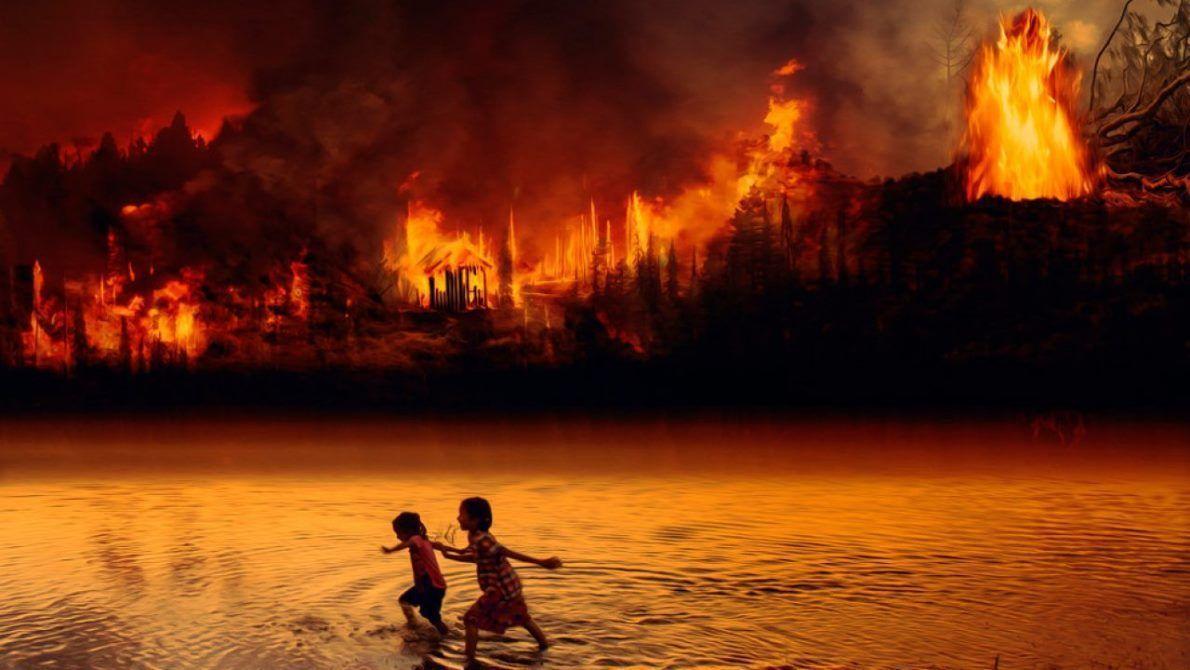 Más de 222 mil incendios forestales se registraron en Brasil en 2020