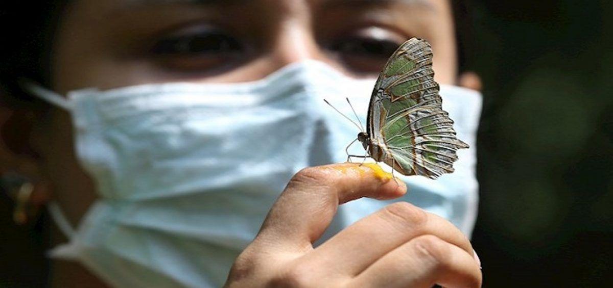 La vida pospandemia, tiempo para hacer las paces con la naturaleza