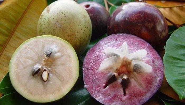 El caimito tiene exquisito sabor y es rico nutrientes