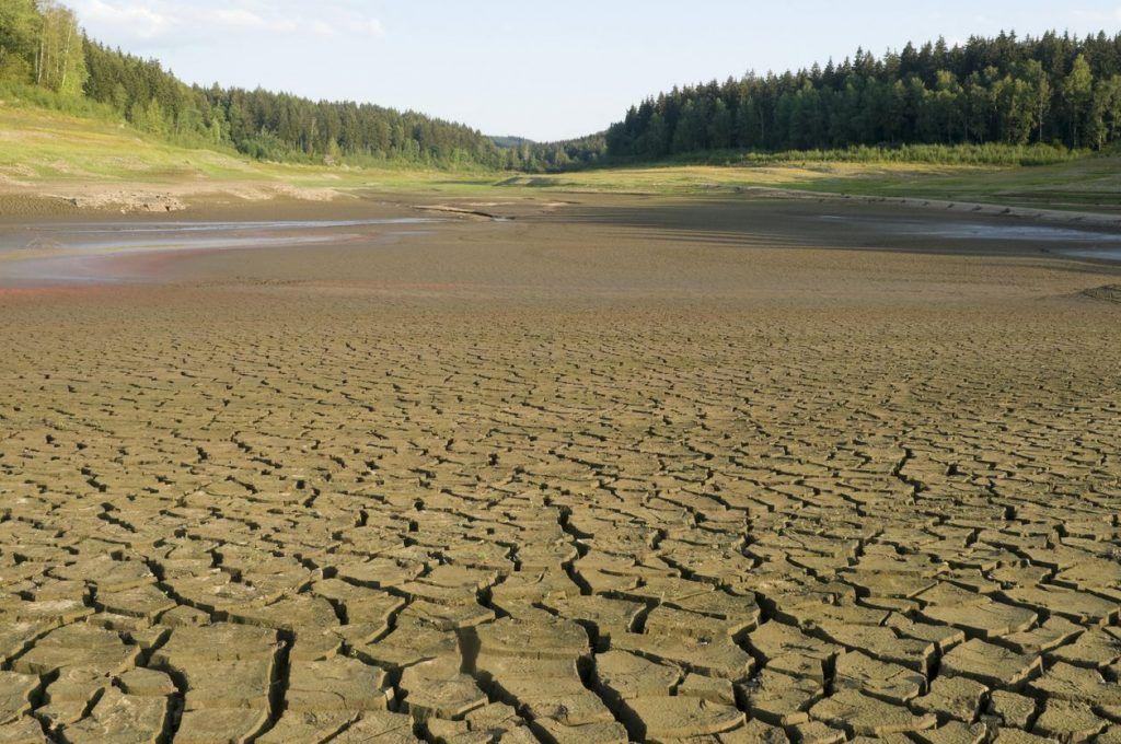 ¿Cómo afecta el cambio climático el caudal de los ríos del mundo?