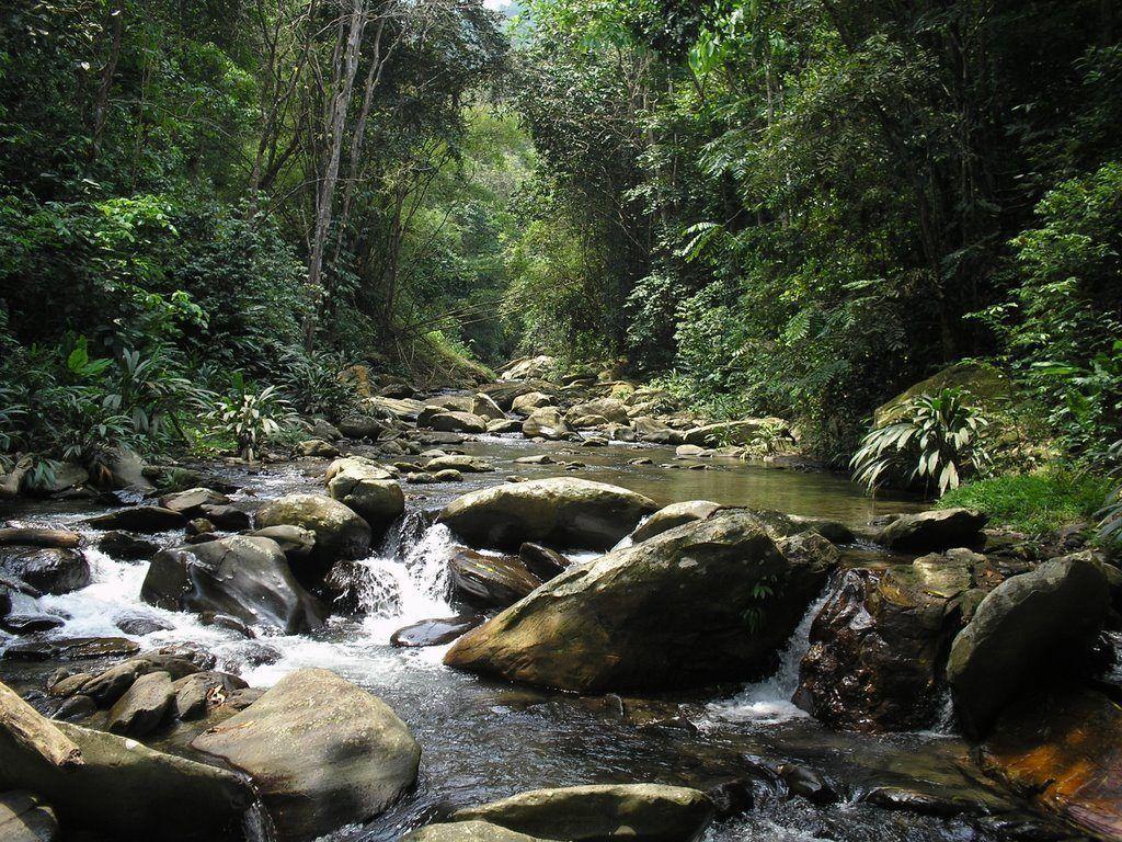 Parque San Esteban, refugio de riquezas naturales y culturales