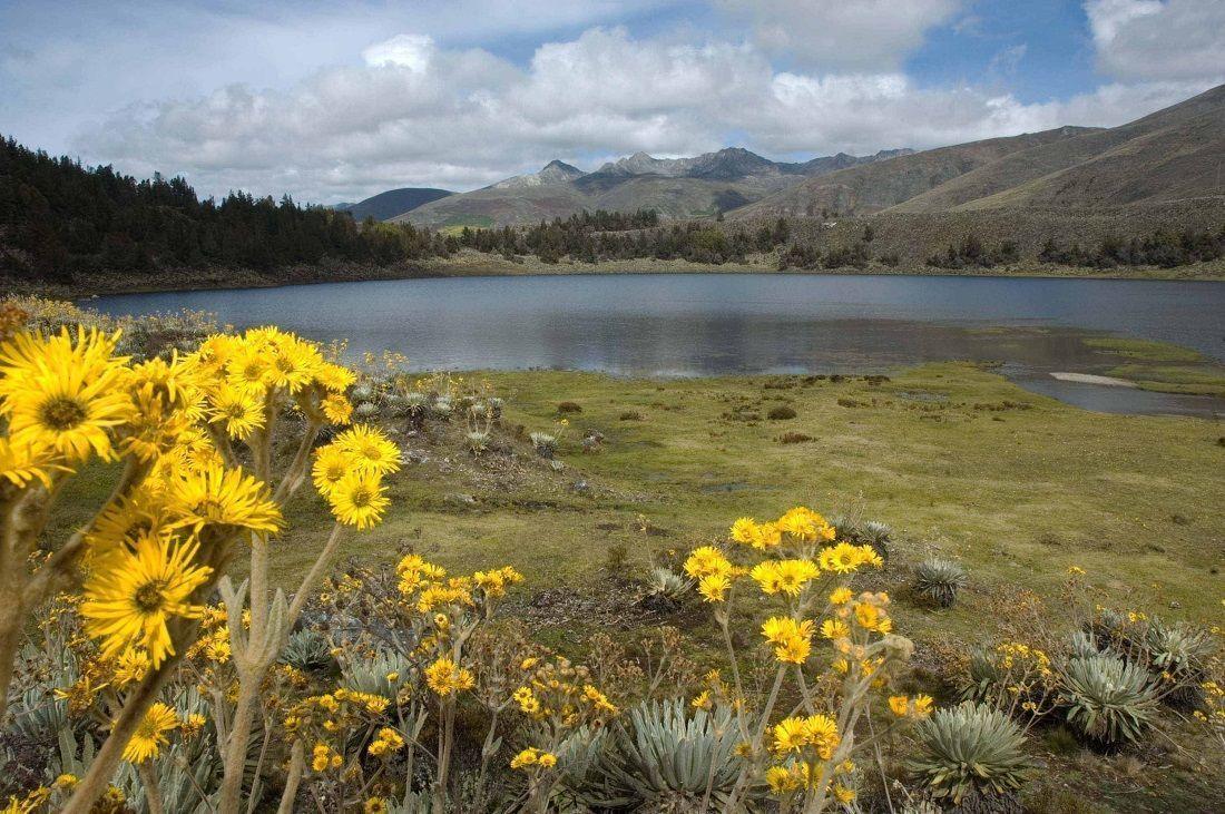 Laguna de Mucubají, hija de un glaciar